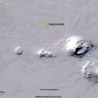 Curiosità antartiche