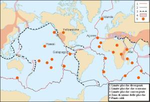 Fonte immagine: http://ginux.univpm.it/didattica/dispense/bavestrello/zoologia/pagine/1_2_1.htm